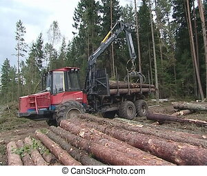 Cargo truck with crane unload logs from truck Forest fell -...