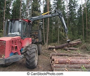Special freight truck loads logs on trailer. Timber harvesting.