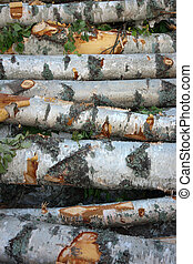 Stack of birch trees - Background with close up of stack of...