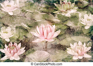 Water Lily on dirty grunge textured canvas
