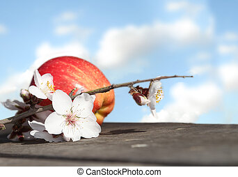 red apple with a flower in the sky