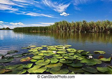 Danube Delta, Romania - a beautiful lake in Danube Delta,...