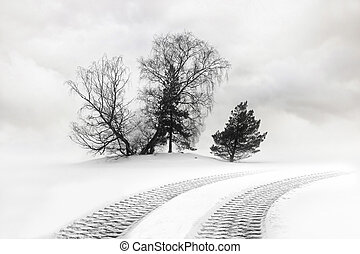 Tire tracks in snow - Tire tracks from heavy vehicle and...