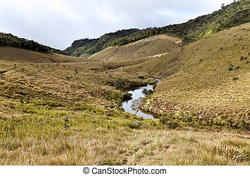 Forest, savanna, and water at Horton Plains - Mist forest,...