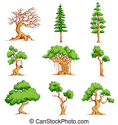 Vector Tree Set - illustration of set of tree on isolated...