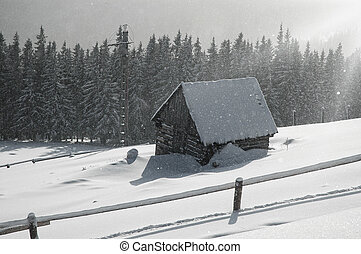 Snow covered, frozen house at winter