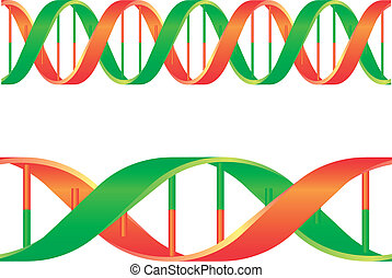 dna string - illustration of a dna string isolated on white...