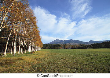 colorful leaves and Mt.Iwate - colorful leaves and Mt.Iwate...