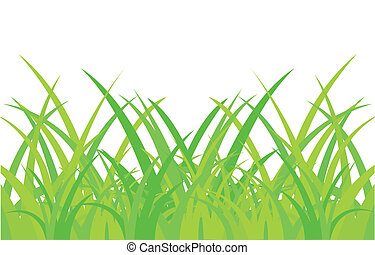Green herb on white background - Vector illustration of the...