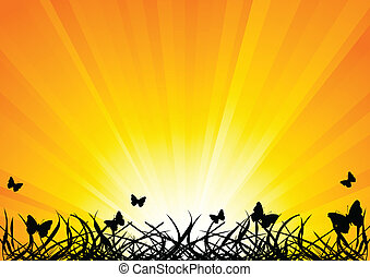 Vector background with butterfly; clip-art