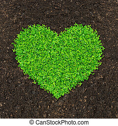 grass and green plants heart shape - grass and green plants...