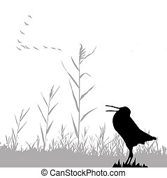 silhouette of the snipe - silhouette of the snipe