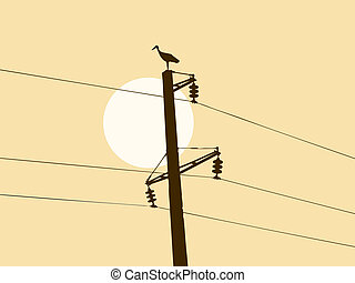 silhouette of the crane on electric pole