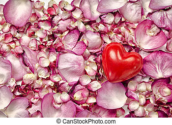 Pink rose petals background with heart