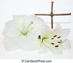 crucifixo, Páscoa, branca, lírio