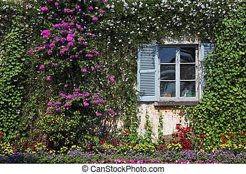 Wall and window, overgrown with flowers, in decorative park...