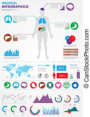 Medical infographics. Human body with internal organs with...