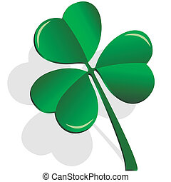 clover - illustration, shamrock clover on a white background