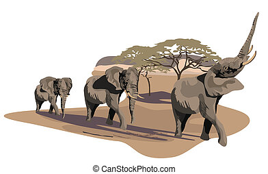 Elephants on Savannah - Illustration of African elephants on...