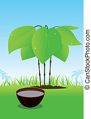Kava Plant And Its Juice Served In Wood Bowl - Illustration...