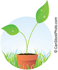 Spring Plant Seed In Pot - Illustration of a young plant...
