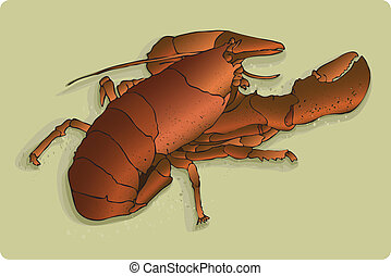 7 layer vector lobsta - Realistic right red lobster on sandy...