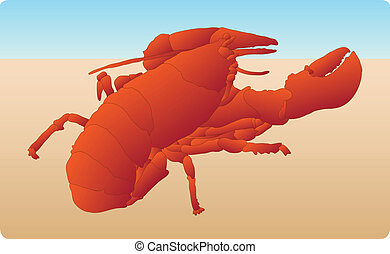 Bright red lobster on the sand - Bright red lobster on sandy...