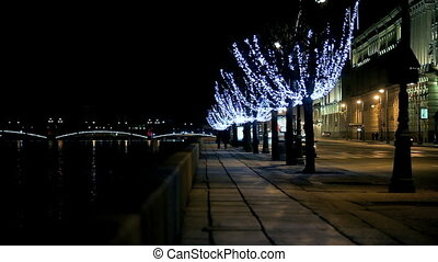 night city - Palace Embankment and the Trinity Bridge in St...