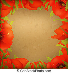 Vintage Paper And Red Poppy