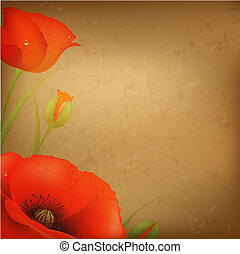 Vintage Red Poppy