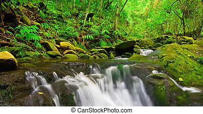 Beautiful Lush Waterfall