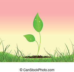 Spring Plant Growing In A Garden - Illustration of a spring...