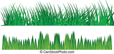 Grass vector background