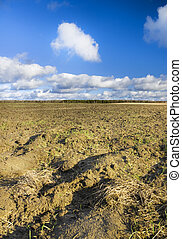 plough plowed brown clay soil field