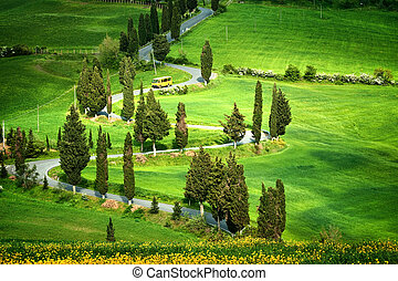 Tuscana Landscape - road serpentines - Beautiful landscape...