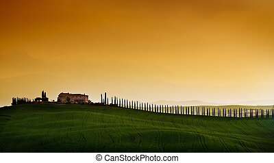 Tuscany - Rural countryside landscape in Tuscany region of...