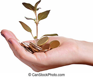 Investment and economy growth concept - Hand holding a pile...