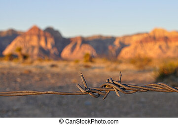 Barbwire - Closeup of barbwire lit by morning sunlight in...