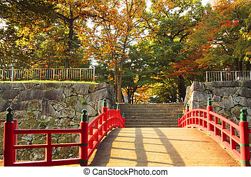 colorful leaves in park Iwate - colorful leaves in park...