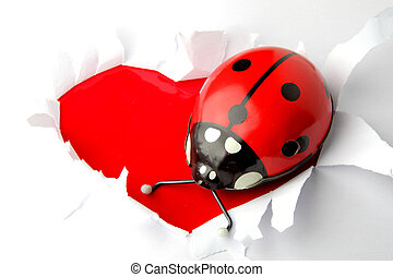 valentine heart background - lady bird (old toy) as...