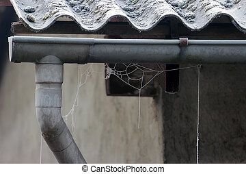 drainpipe - frosty spider web on an old drainpipe in winter...
