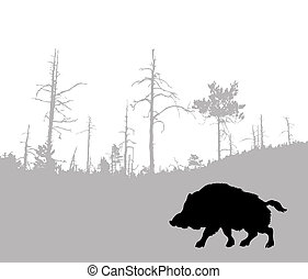 silhouette of the wild boar
