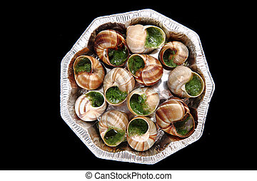 snails - french gourmet food - snails french gourmet food...