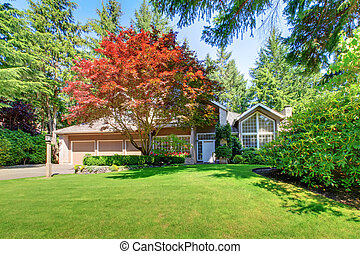 Beautiful green front garden with brown house - Beautiful...