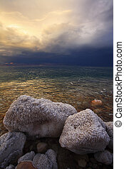 The coastal stones covered by salty adjournment