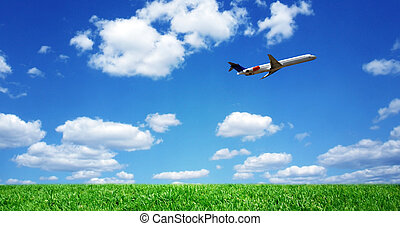 Airplane over grassy field