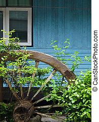 home garden - Shrubbery of the home garden