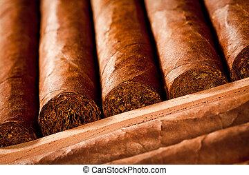 Cigarros, humidor