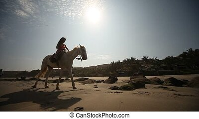 Horse Riding In Sun - Horse Riding At Beach