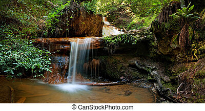 Silver Falls on Berry Creek Trail, Big Basin - The...